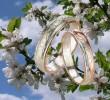 Майская свадьба — быть или не быть? Что говорит народная мудрость?