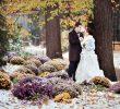 Свадьба в ноябре. Народные приметы.