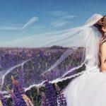 Высокие правила свадебного этикета: как не ударить в грязь лицом