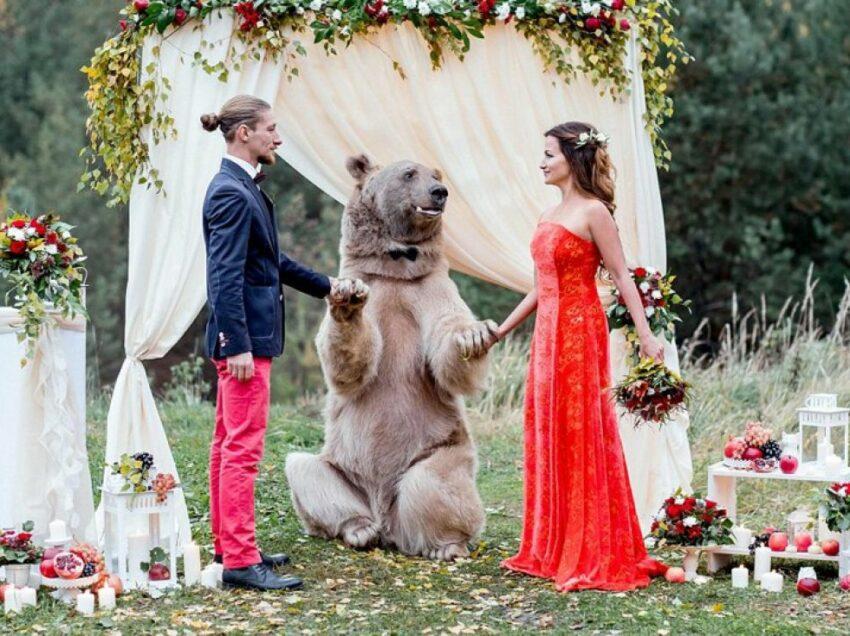 Модный свадебный тренд — животные на свадьбе