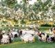 Какие цены на свадебный банкет Москве и Подмосковье?