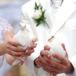 Идеальная свадьба: 50 оттенков белого